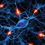能力差、実は意識の差